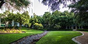 Landscaping Company Texas