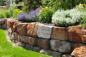 Landscaping Services Get In Contact Image