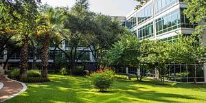 Landscape & Construction Company Austin TX