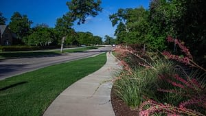 Commercial Landscaping with Mulch